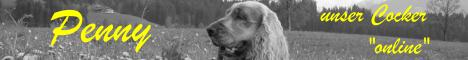 """Private Homepage über unser Cocker-Mädchen """"Penny"""", Informationen über Englische Cocker Spaniel und unseren Cocker-Treffpunkt, Photo-Album, Gedanken/Humor zum Thema HUND, Animated Dog Gifs, Links ...."""