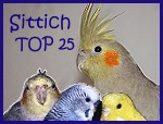Sittich TOP 25