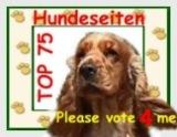 TOP 75 Hundeseiten